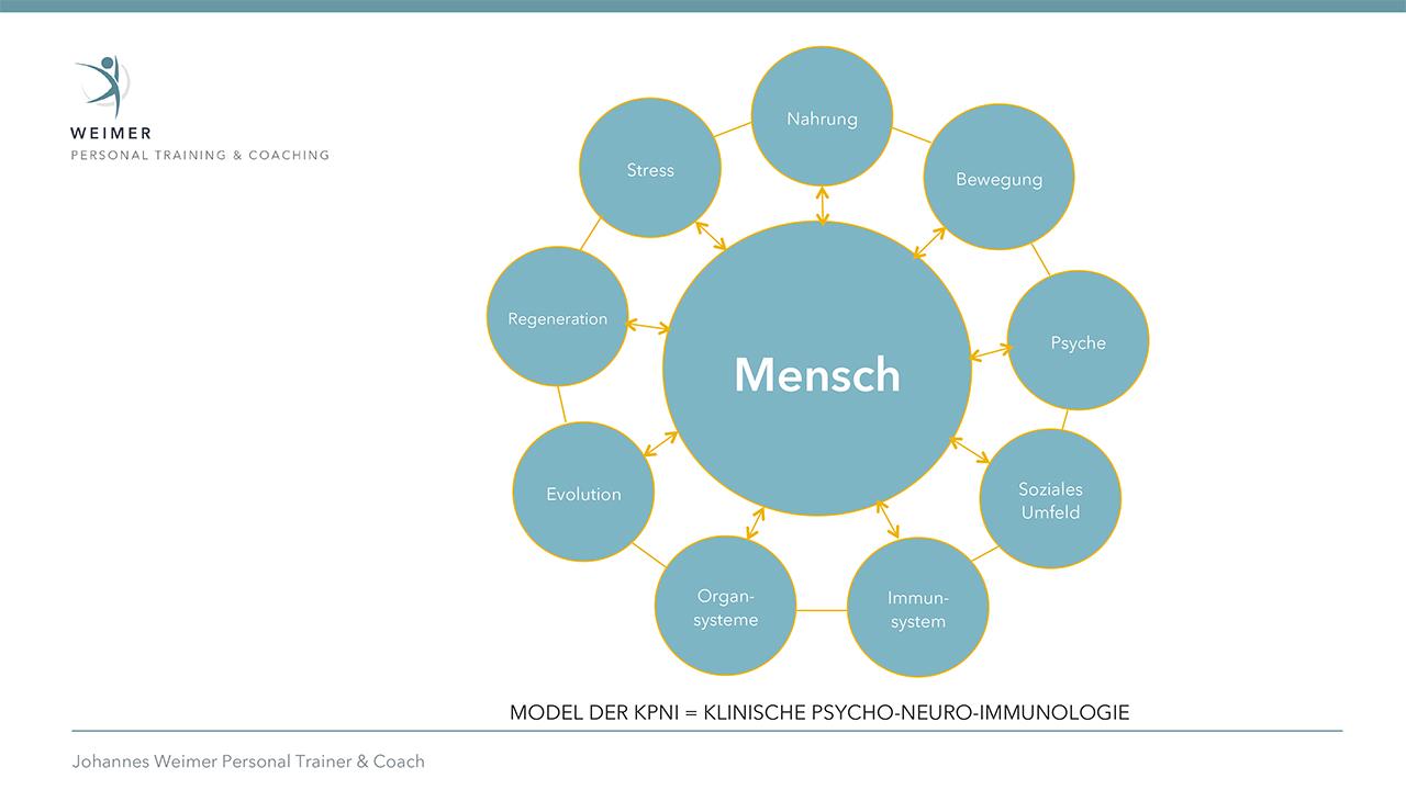 Weimer Personal Training & Coaching - KPNI